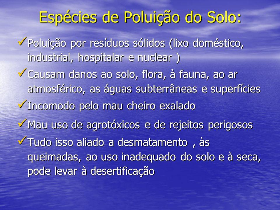 Espécies de Poluição do Solo: Poluição por resíduos sólidos (lixo doméstico, industrial, hospitalar e nuclear ) Poluição por resíduos sólidos (lixo do