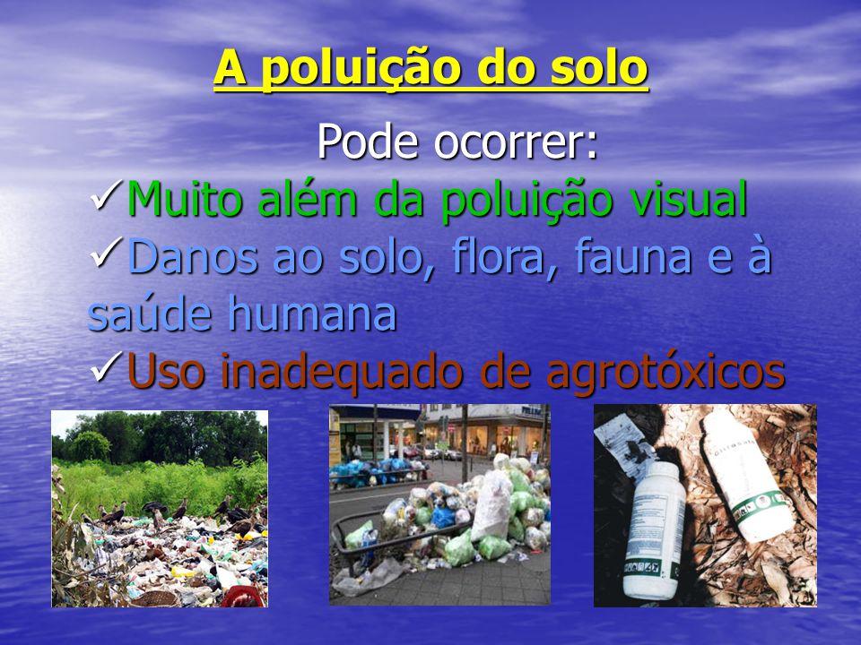 A poluição do solo Pode ocorrer: Pode ocorrer: Muito além da poluição visual Muito além da poluição visual Danos ao solo, flora, fauna e à saúde human