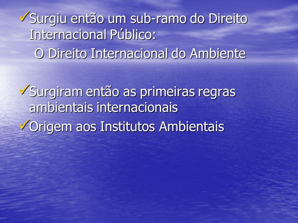 Surgiu então um sub-ramo do Direito Internacional Público: Surgiu então um sub-ramo do Direito Internacional Público: O Direito Internacional do Ambie
