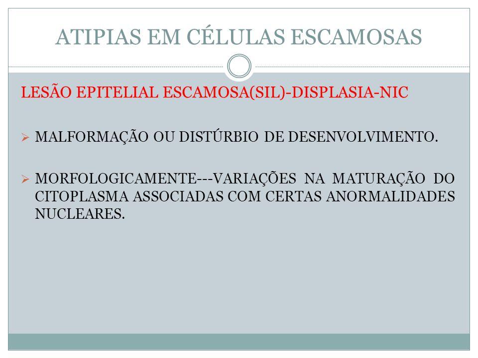 ATIPIAS EM CÉLULAS ESCAMOSAS LESÃO EPITELIAL ESCAMOSA(SIL)-DISPLASIA-NIC MALFORMAÇÃO OU DISTÚRBIO DE DESENVOLVIMENTO. MORFOLOGICAMENTE---VARIAÇÕES NA