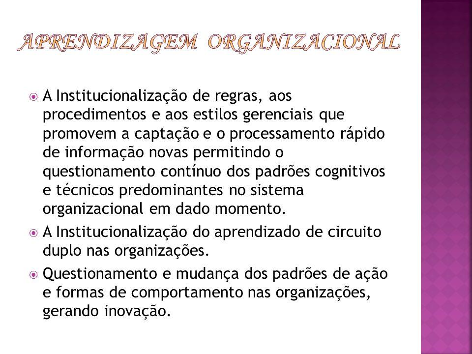 A Institucionalização de regras, aos procedimentos e aos estilos gerenciais que promovem a captação e o processamento rápido de informação novas permi