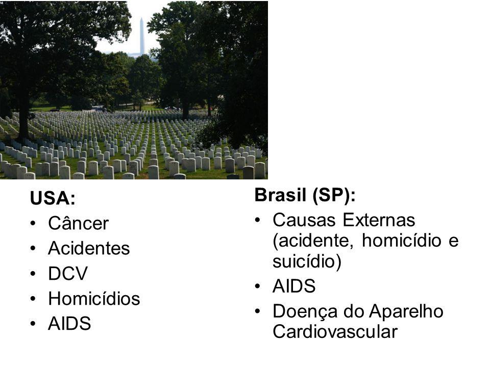 USA: Câncer Acidentes DCV Homicídios AIDS Brasil (SP): Causas Externas (acidente, homicídio e suicídio) AIDS Doença do Aparelho Cardiovascular