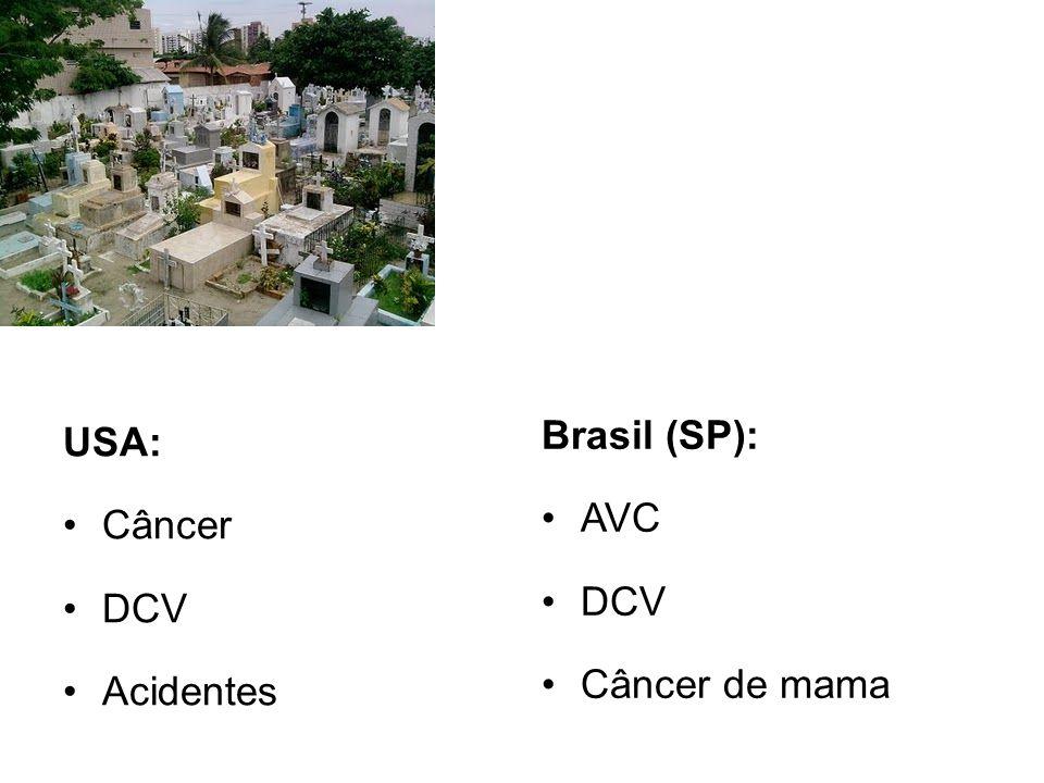 USA: Câncer DCV Acidentes Brasil (SP): AVC DCV Câncer de mama
