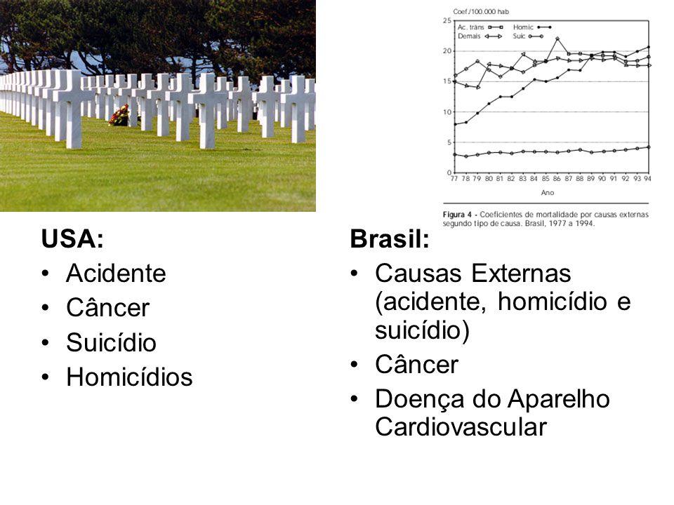 USA: Acidente Câncer Suicídio Homicídios Brasil: Causas Externas (acidente, homicídio e suicídio) Câncer Doença do Aparelho Cardiovascular