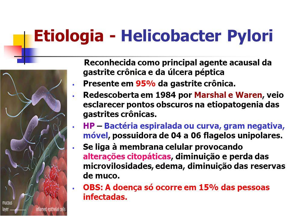 Etiologia - Helicobacter Pylori Reconhecida como principal agente acausal da gastrite crônica e da úlcera péptica Presente em 95% da gastrite crônica.