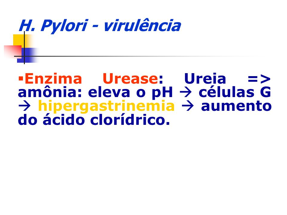 H. Pylori - virulência Enzima Urease: Ureia => amônia: eleva o pH células G hipergastrinemia aumento do ácido clorídrico.