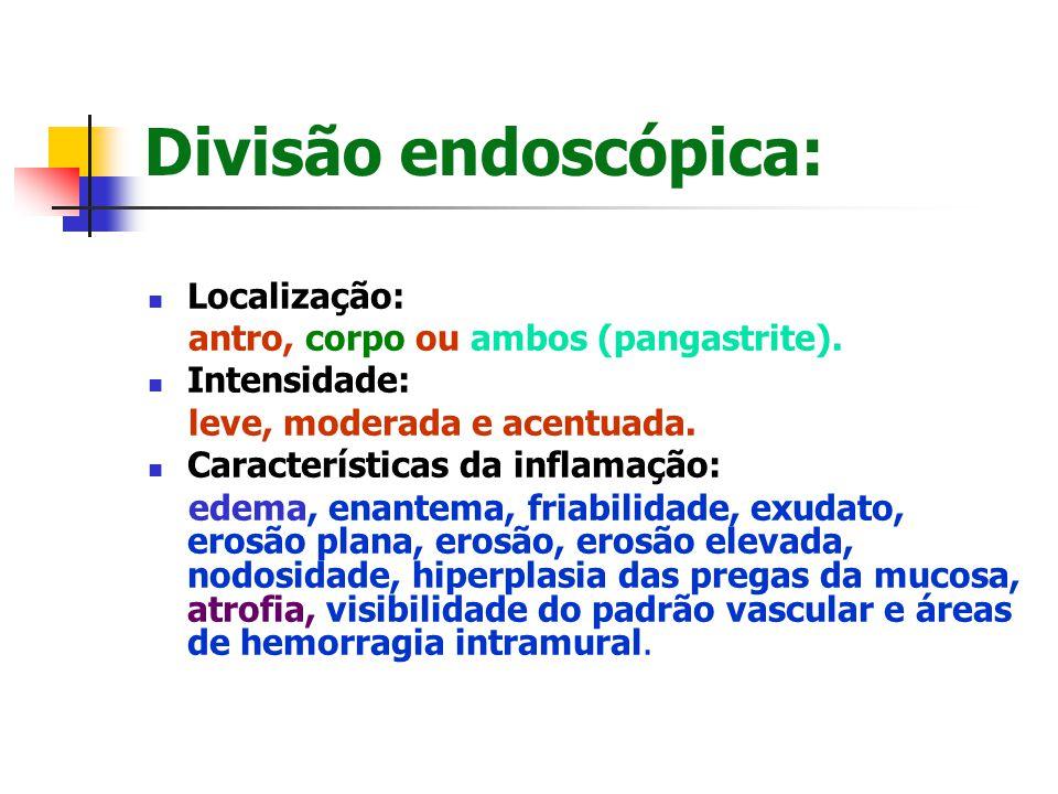 Divisão endoscópica: Localização: antro, corpo ou ambos (pangastrite). Intensidade: leve, moderada e acentuada. Características da inflamação: edema,