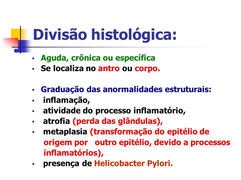 Divisão histológica: Aguda, crônica ou específica Se localiza no antro ou corpo. Graduação das anormalidades estruturais: inflamação, atividade do pro