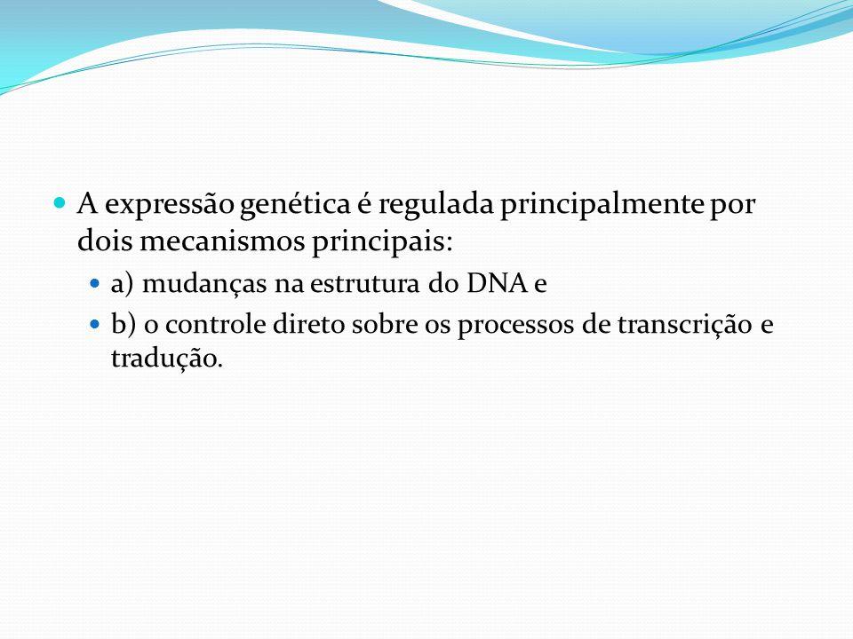 A expressão genética é regulada principalmente por dois mecanismos principais: a) mudanças na estrutura do DNA e b) o controle direto sobre os processos de transcrição e tradução.