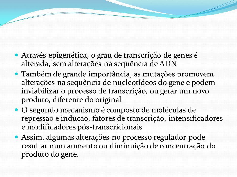 Através epigenética, o grau de transcrição de genes é alterada, sem alterações na sequência de ADN Também de grande importância, as mutações promovem alterações na sequência de nucleotídeos do gene e podem inviabilizar o processo de transcrição, ou gerar um novo produto, diferente do original O segundo mecanismo é composto de moléculas de repressao e inducao, fatores de transcrição, intensificadores e modificadores pós-transcricionais Assim, algumas alterações no processo regulador pode resultar num aumento ou diminuição de concentração do produto do gene.