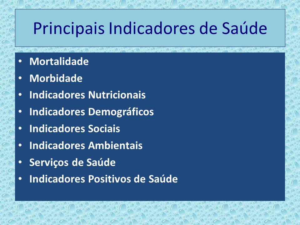 Principais Indicadores de Saúde Mortalidade Morbidade Indicadores Nutricionais Indicadores Demográficos Indicadores Sociais Indicadores Ambientais Ser