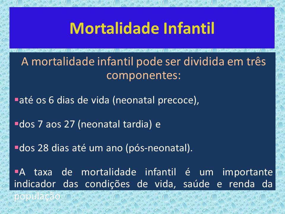 Mortalidade Infantil A mortalidade infantil pode ser dividida em três componentes: até os 6 dias de vida (neonatal precoce), dos 7 aos 27 (neonatal ta