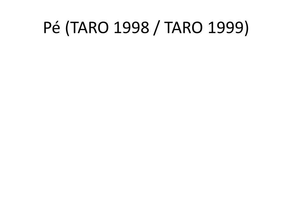 Pé (TARO 1998 / TARO 1999)