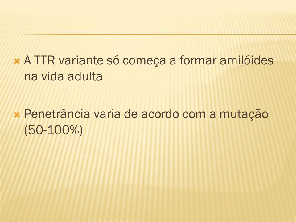 A TTR variante só começa a formar amilóides na vida adulta Penetrância varia de acordo com a mutação (50-100%)