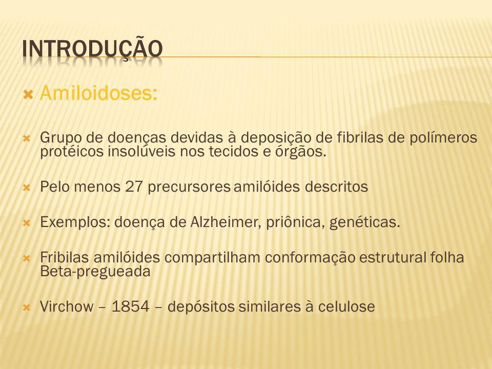 Amiloidoses: Grupo de doenças devidas à deposição de fibrilas de polímeros protéicos insolúveis nos tecidos e órgãos. Pelo menos 27 precursores amilói