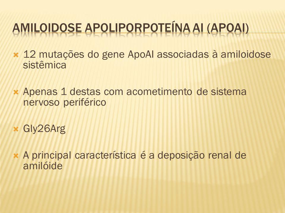 12 mutações do gene ApoAI associadas à amiloidose sistêmica Apenas 1 destas com acometimento de sistema nervoso periférico Gly26Arg A principal caract