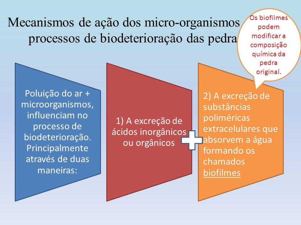 Mecanismos de ação dos micro-organismos nos processos de biodeterioração das pedras Poluição do ar + microorganismos, influenciam no processo de biode