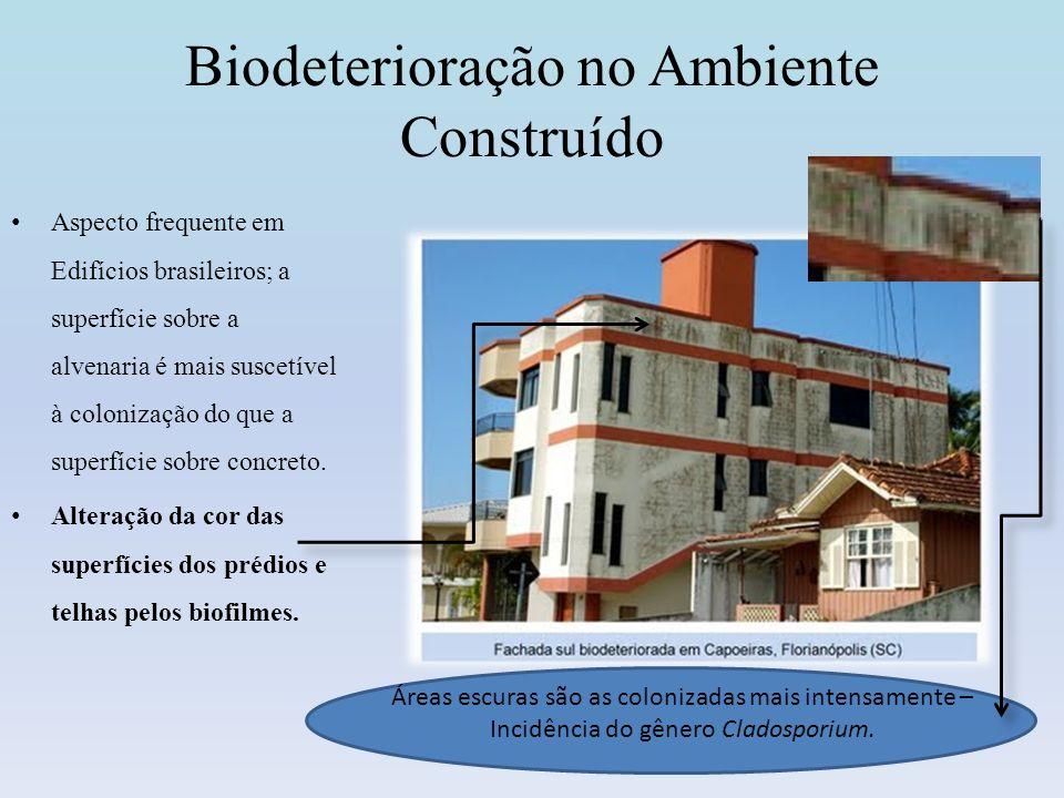 Deterioração Microbiana de Material de Construção e Histórico A Biodeterioração pode ser definida como qualquer alteração indesejável nas propriedades de um material causada pela atividade vital de um organismo.