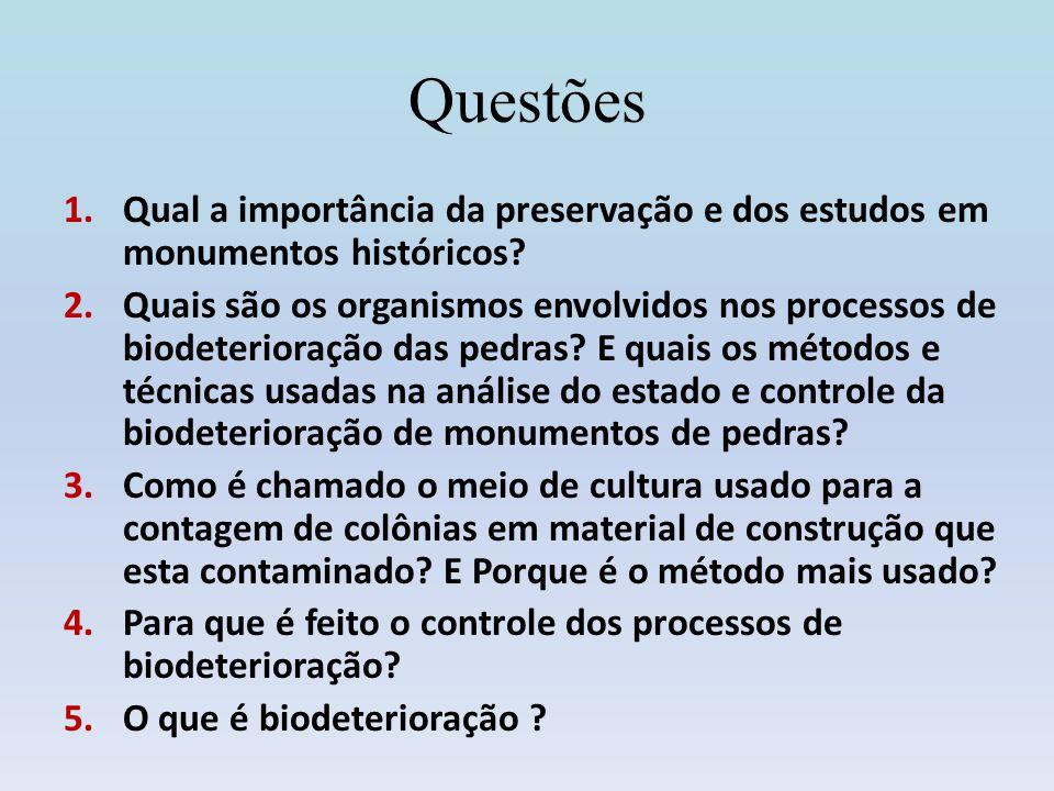 Questões 1.Qual a importância da preservação e dos estudos em monumentos históricos? 2.Quais são os organismos envolvidos nos processos de biodeterior