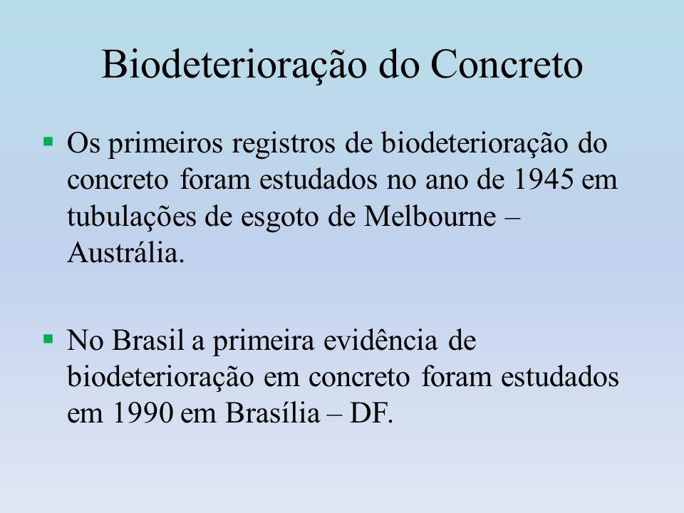 Biodeterioração do Concreto Produzem ácido sulfúrico (corrosivo), por oxidação de gás sulfídrico No processo de biodeterioração do concreto Bactérias Quimiolitotróficas ex: do gênero Thiobacillus.