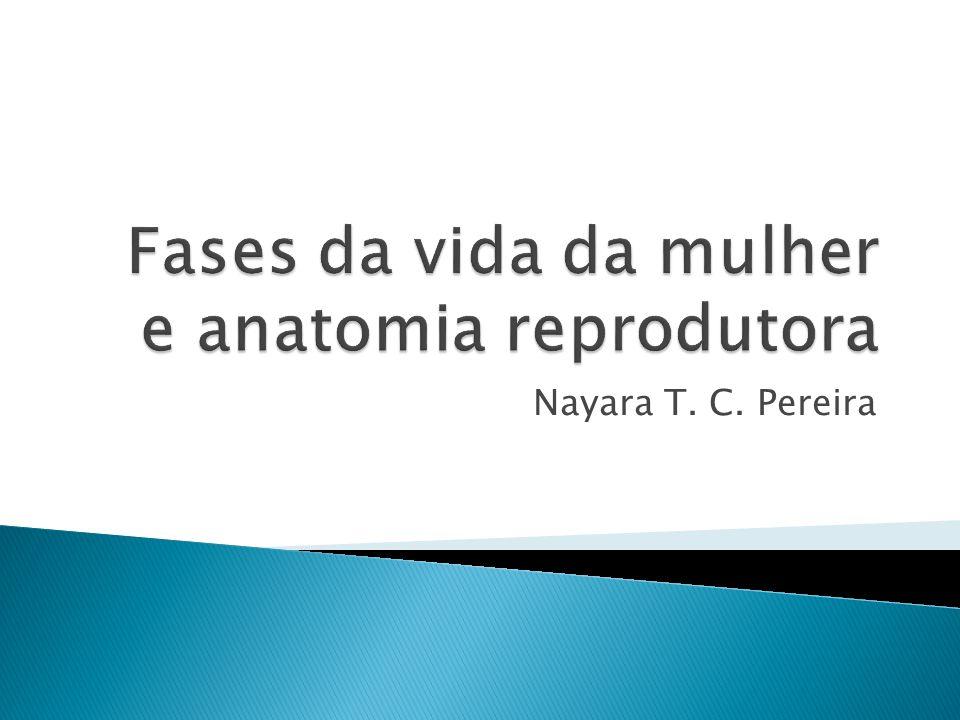 Nayara T. C. Pereira