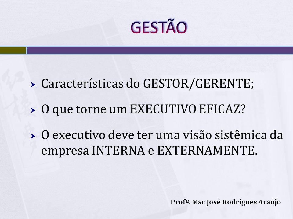 Características do GESTOR/GERENTE; O que torne um EXECUTIVO EFICAZ? O executivo deve ter uma visão sistêmica da empresa INTERNA e EXTERNAMENTE. Profº.