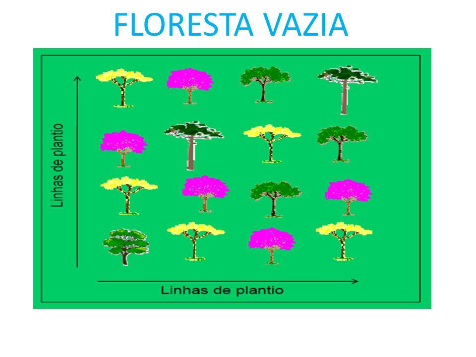 Recuperação convencional Eu quero uma floresta, eu faço uma floresta! -Planto Árvores ué! (visão dendrológica) -Utilização de exóticas -Atendo a Legal