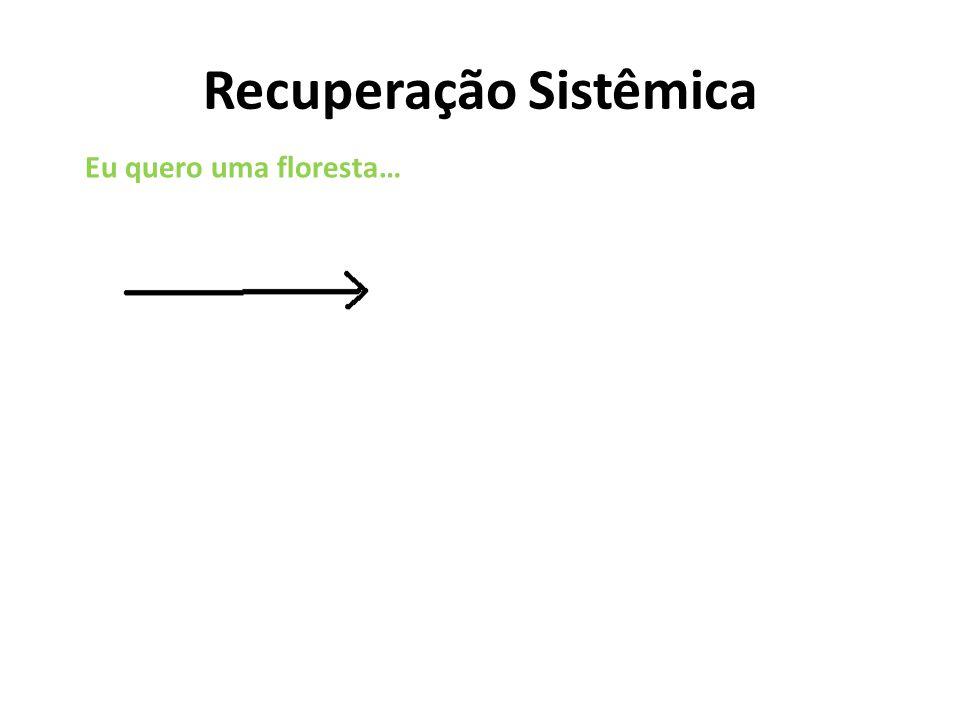 Restauração sistêmicaRecuperação convencional área degradada Controle se dá pelo controleControle se dá não controlando
