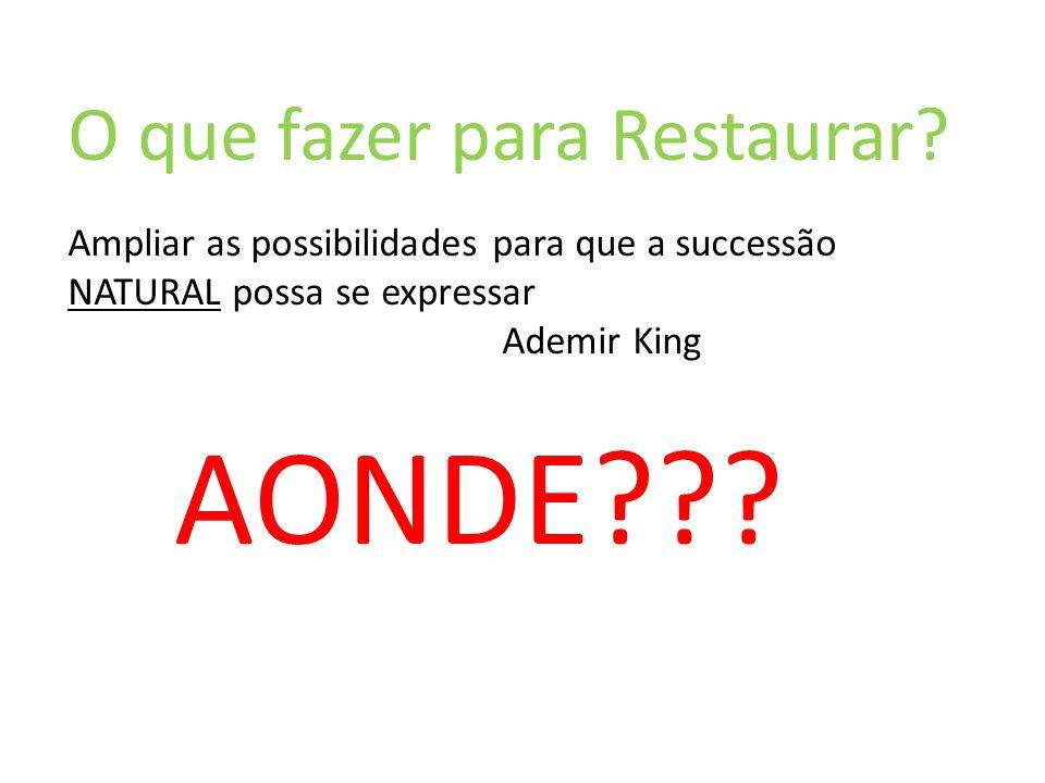 O que fazer para Restaurar? Ampliar as possibilidades para que a successão NATURAL possa se expressar Ademir King