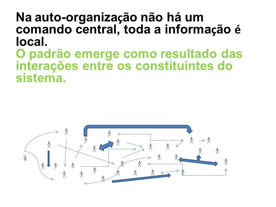 Na auto-organiza ç ão não há um comando central, toda a informa ç ão é local. O padrão emerge como resultado das interações entre os constituintes do