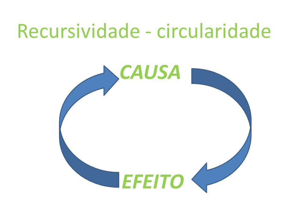 Recursividade - circularidade CAUSA EFEITO