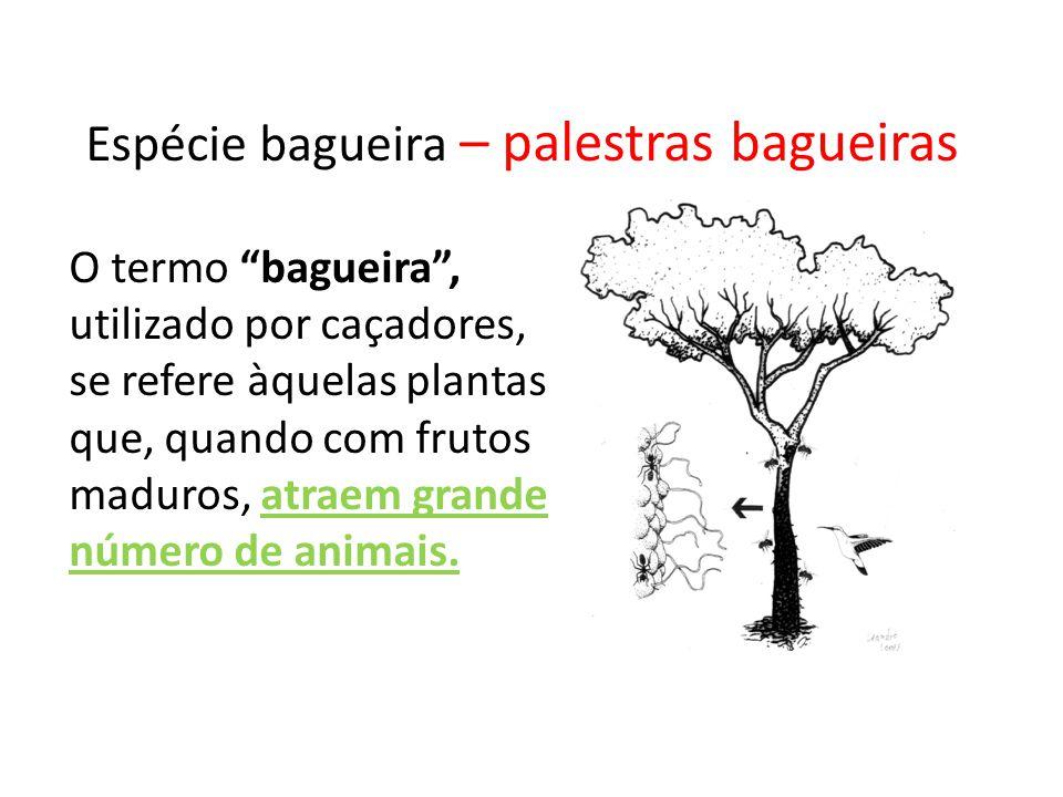 Espécie bagueira O termo bagueira, utilizado por caçadores, se refere àquelas plantas que, quando com frutos maduros, atraem grande número de animais.