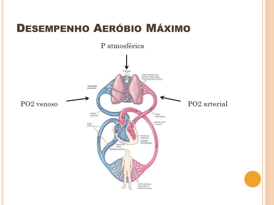 D ESEMPENHO A ERÓBIO M ÁXIMO PO2 arterialPO2 venoso P atmosférica