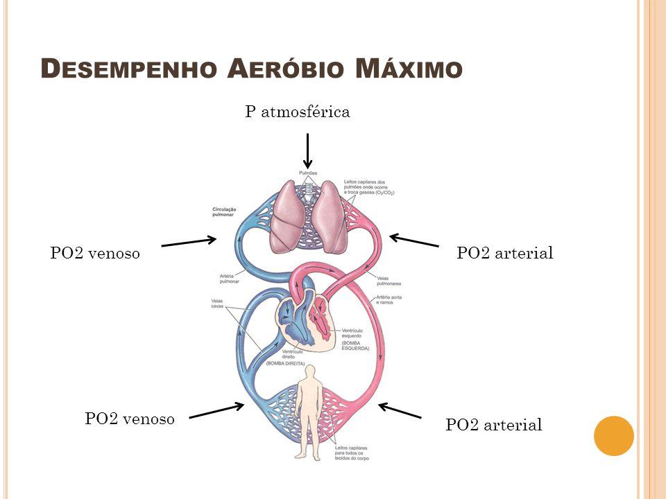 D ESEMPENHO A ERÓBIO M ÁXIMO PO2 venoso PO2 arterial PO2 venoso P atmosférica