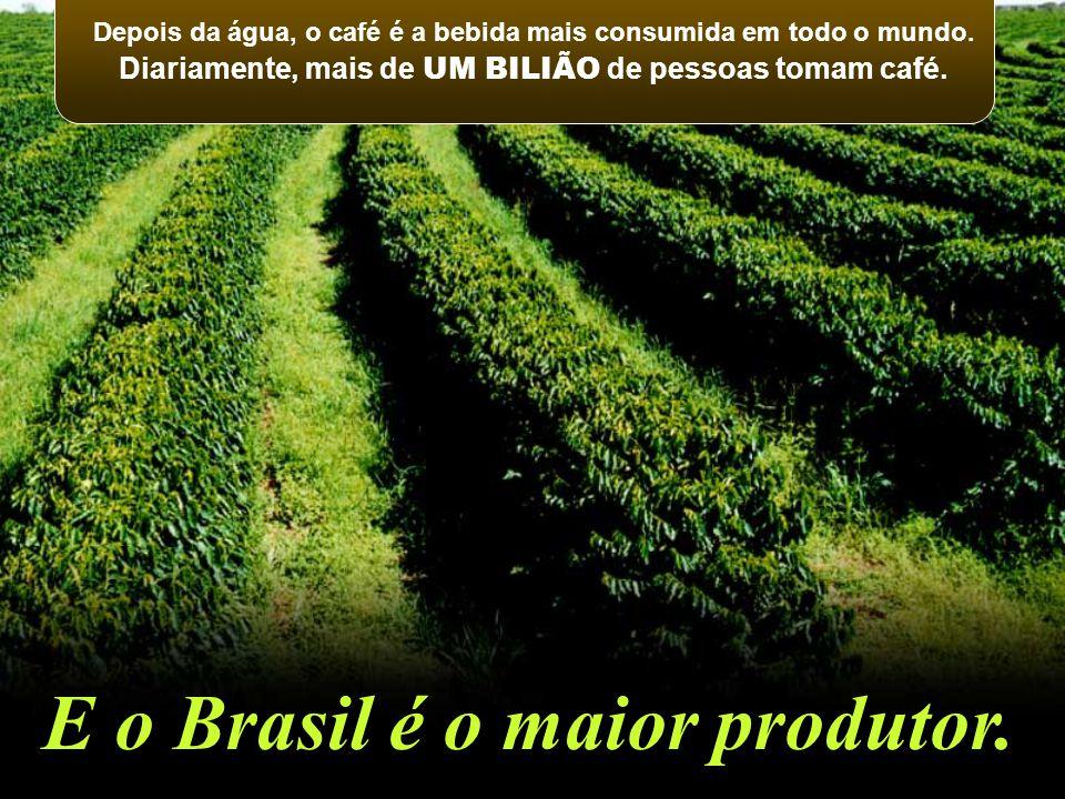 Depois da água, o café é a bebida mais consumida em todo o mundo. Diariamente, mais de UM BILIÃO de pessoas tomam café. E o Brasil é o maior produtor.
