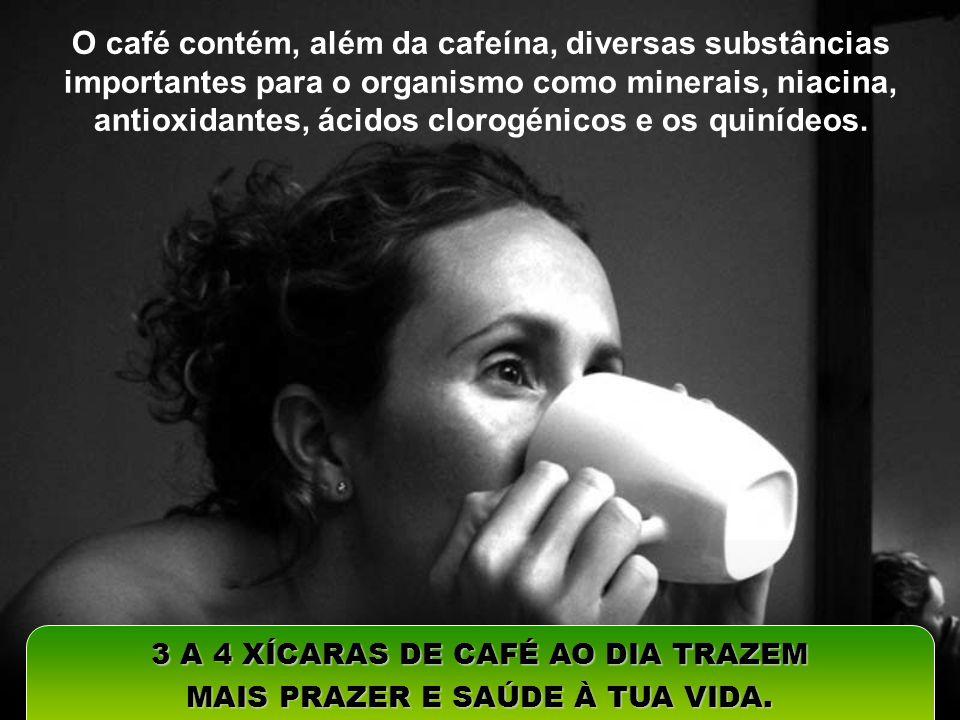 O café contém, além da cafeína, diversas substâncias importantes para o organismo como minerais, niacina, antioxidantes, ácidos clorogénicos e os quin