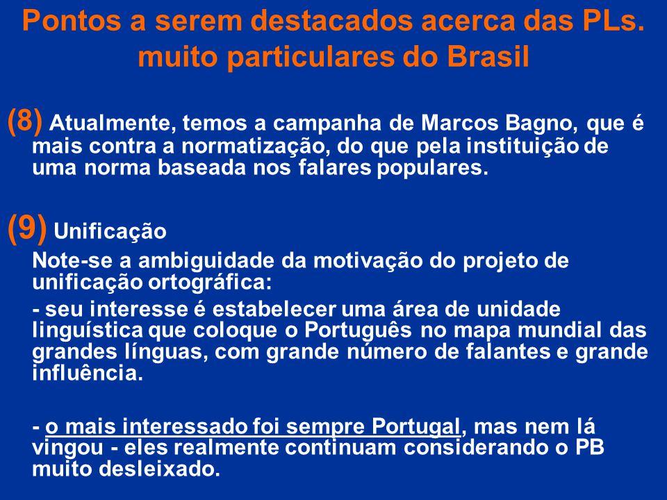 Pontos a serem destacados acerca das PLs. muito particulares do Brasil (8) Atualmente, temos a campanha de Marcos Bagno, que é mais contra a normatiza
