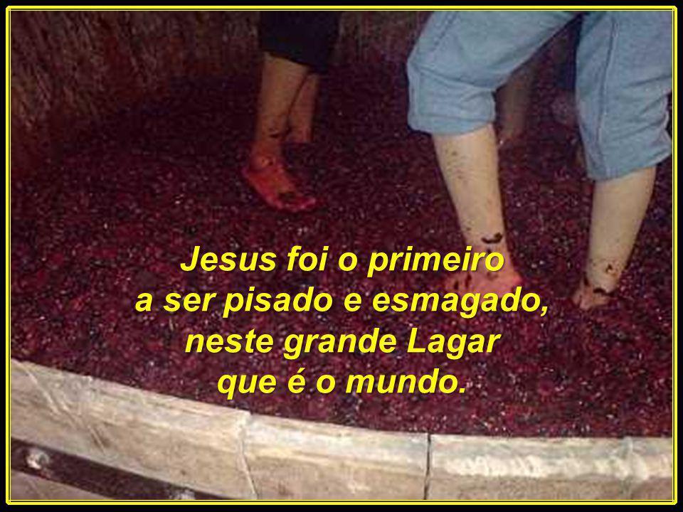 Se nós somos as uvas espirituais para o Senhor, o mundo será o Lagar, onde seremos pisados e humilhados. As provas e as aflições nos perseguirão até n