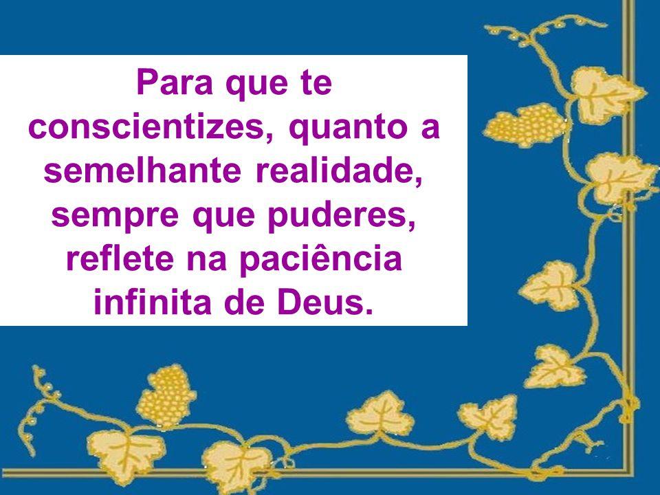 Para que te conscientizes, quanto a semelhante realidade, sempre que puderes, reflete na paciência infinita de Deus.