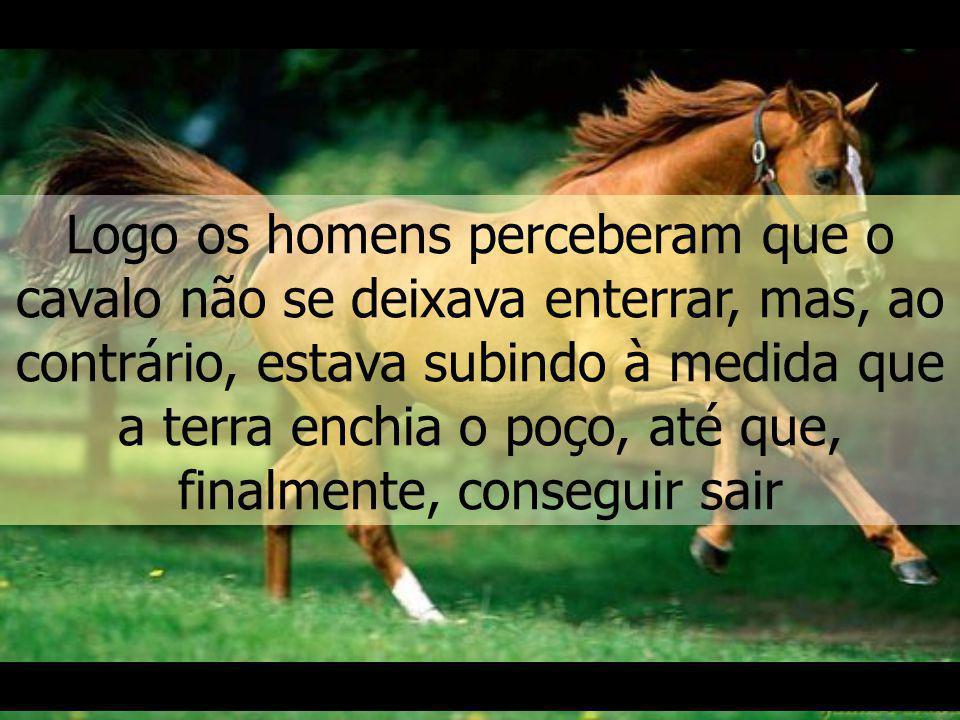 Mas, à medida que a terra caía em seu dorso, os animal a sacudia e ela ia se acumulando no fundo, possibilitando ao cavalo ir subindo.