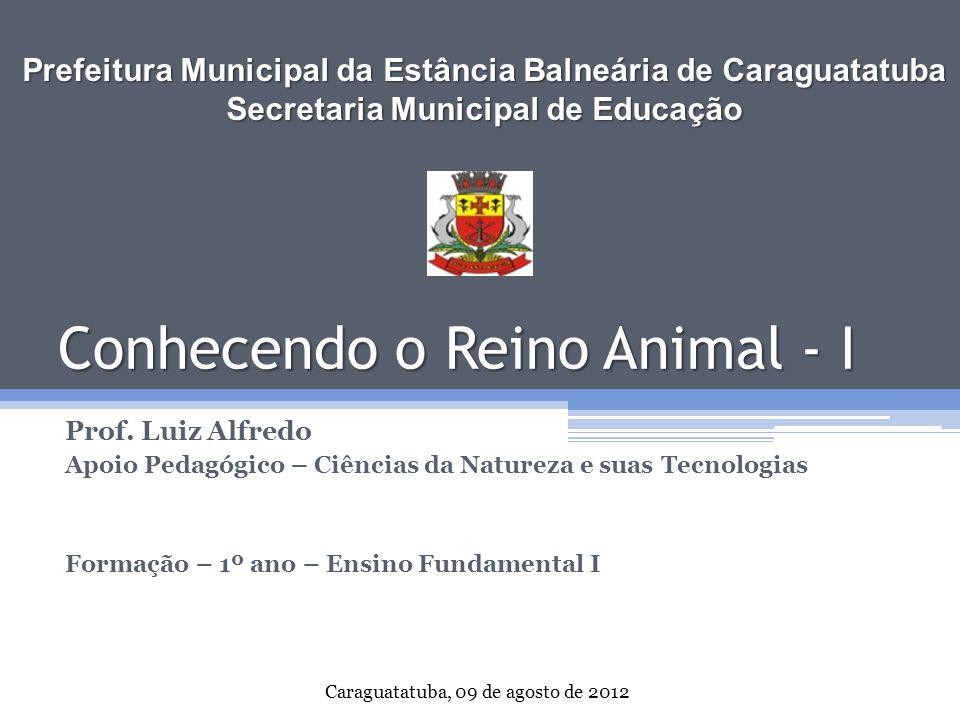Conhecendo o Reino Animal - I Prof. Luiz Alfredo Apoio Pedagógico – Ciências da Natureza e suas Tecnologias Formação – 1º ano – Ensino Fundamental I P
