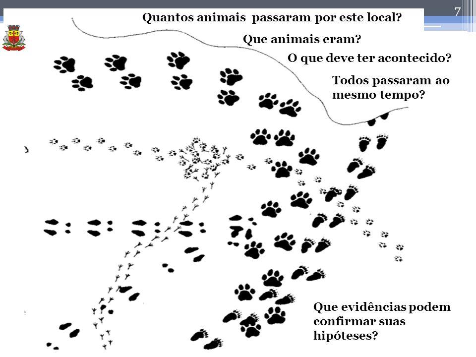 7 Prof. Luiz Alfredo Que evidências podem confirmar suas hipóteses? Todos passaram ao mesmo tempo? O que deve ter acontecido? Que animais eram? Quanto