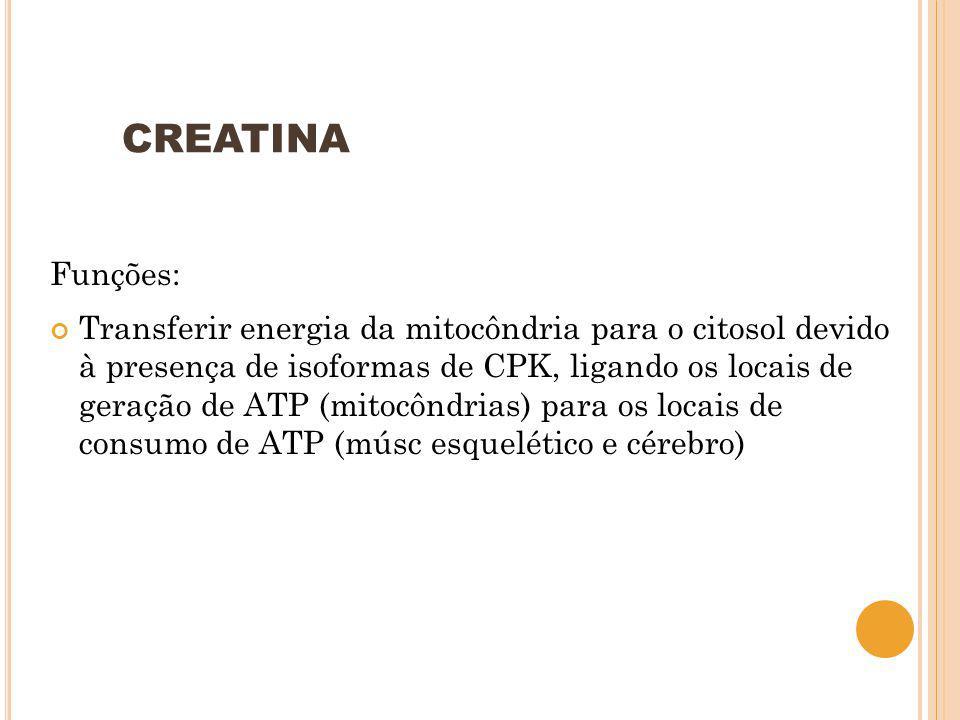 CREATINA Funções: Transferir energia da mitocôndria para o citosol devido à presença de isoformas de CPK, ligando os locais de geração de ATP (mitocôn
