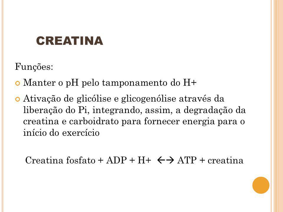 CREATINA Funções: Manter o pH pelo tamponamento do H+ Ativação de glicólise e glicogenólise através da liberação do Pi, integrando, assim, a degradaçã