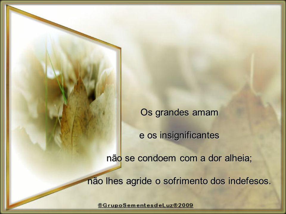 Os grandes amam e os insignificantes não se condoem com a dor alheia; não lhes agride o sofrimento dos indefesos.