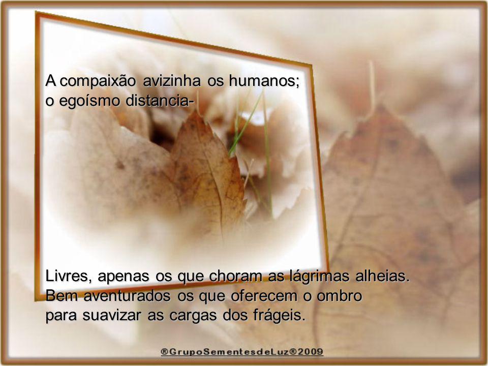 A compaixão avizinha os humanos; o egoísmo distancia- Livres, apenas os que choram as lágrimas alheias.