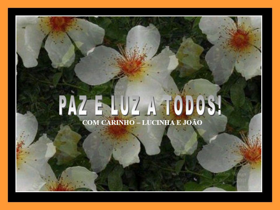 DO SITE – C.E.CAMINHOS DE LUZ. FORMATAÇÃO – JOÃO MATEOLI. joaomateoli@uol.com.br IMAGENS – INTERNET. MUSICA – ERNESTO CORTAZAR. MEDITATIVE.