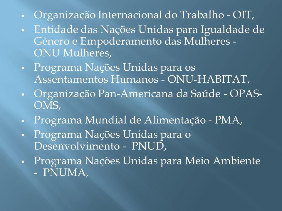 Organização Internacional do Trabalho - OIT, Entidade das Nações Unidas para Igualdade de Gênero e Empoderamento das Mulheres - ONU Mulheres, Programa Nações Unidas para os Assentamentos Humanos - ONU-HABITAT, Organização Pan-Americana da Saúde - OPAS- OMS, Programa Mundial de Alimentação - PMA, Programa Nações Unidas para o Desenvolvimento - PNUD, Programa Nações Unidas para Meio Ambiente - PNUMA,