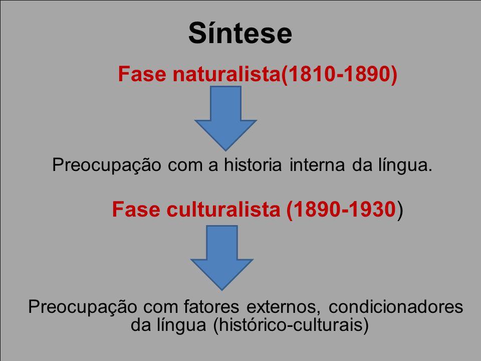 Síntese Fase naturalista(1810-1890) Preocupação com a historia interna da língua.