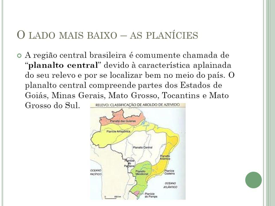 O LADO MAIS BAIXO – AS PLANÍCIES A região central brasileira é comumente chamada de planalto central devido à característica aplainada do seu relevo e por se localizar bem no meio do país.